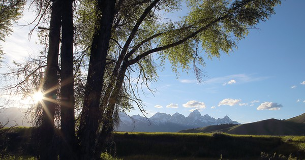 Photo: Greetings from Wyoming | TreeHugger